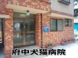 府中犬猫病院