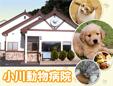 小川動物病院