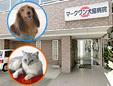 マークワン犬猫病院