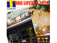 DOG・LIFEby−dogcom