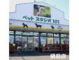 ペットスタジオ101/鍋島店